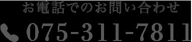 075-311-781
